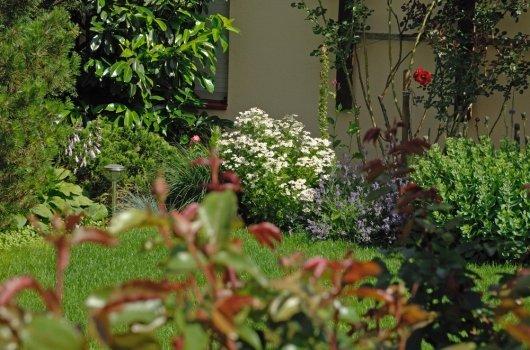 Gärten pflegen